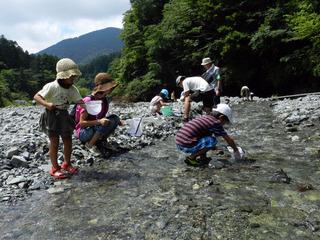 4水生生物観察02.jpg