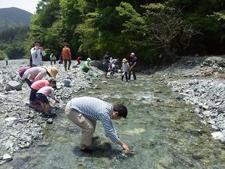 水生生物観察.jpg