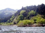 風薫る五月の水源林